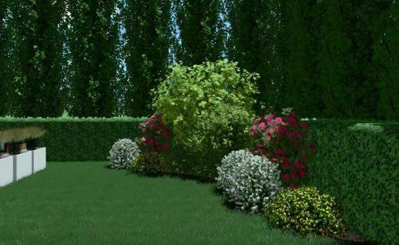 video de un proyecto paisajismo
